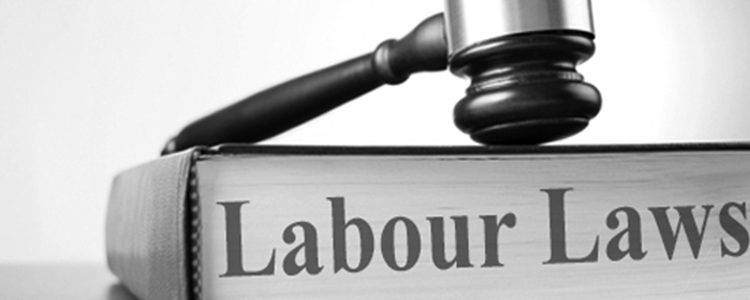 Employment And Disability Claims